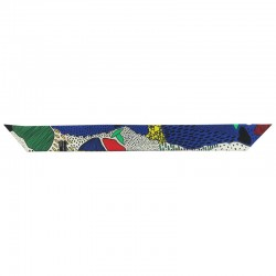 Envers du Ruban de soie Multicolor - 4 cm